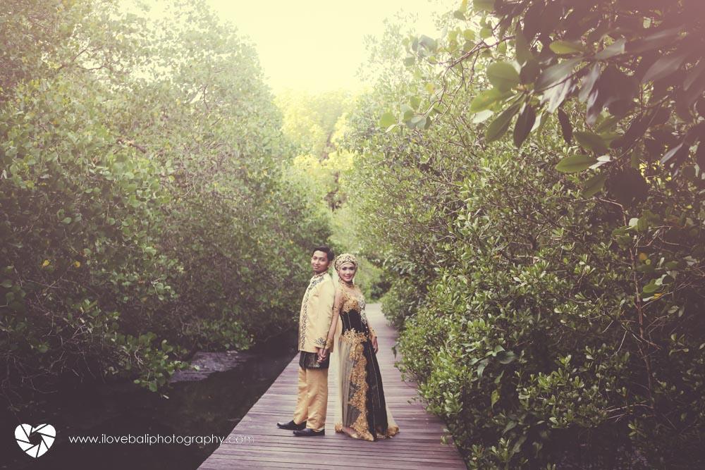 Hutan Mangrove Ngurah Rai bali